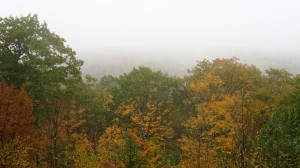 A foggy fall day, but still well worth the miniscule hike :-)
